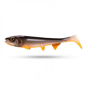 Hostagevalley Shad 22 cm - Camelion Roach