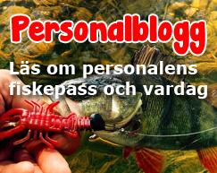 Personalbloggen